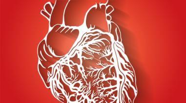 Consejos para tener un corazón sano