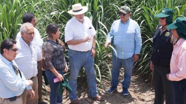 Gobernador regional pide a azucareras lambayecanas invertir en tecnología