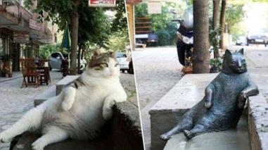 Facebook: inauguran una estatua en honor de Tombili, el gato más relajado del mundo