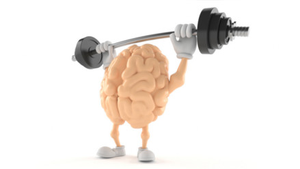 Alimentos para potenciar la función cerebral
