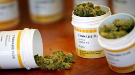 Congreso argentino debate sobre la despenalización del cannabis medicinal
