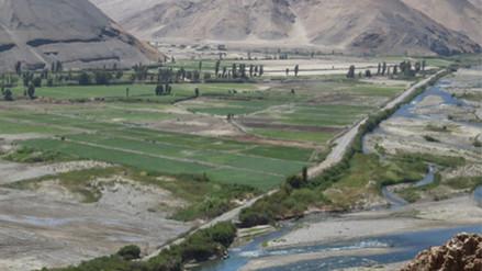 Arequipa: productores cosecharán menos arroz por falta de agua