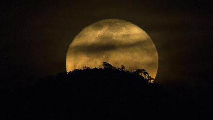 La superluna iluminó el mundo y usuarios compartieron imágenes en redes