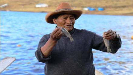Condiciones anómalas en el mar originaron varazón de anchovetas