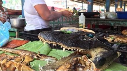 Reportaje | La venta de fauna silvestre, un problema sin control en Perú
