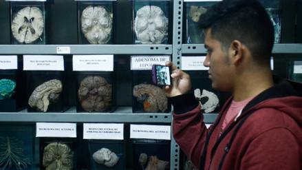 Museo del Cerebro, cuando lo insólito y la ciencia se juntan