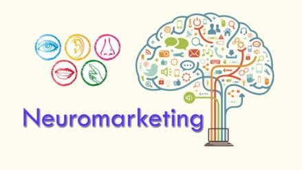 ¿Qué es el Neuromarketing? Aquí la respuesta