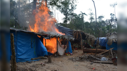 Recuperan 250 hectáreas de Reserva Nacional Tambopata