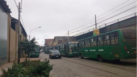 Buses de transporte público estacionados obstruyen calles en Breña