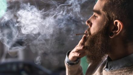 Marihuana: 8 estados norteamericanos aprueban su uso