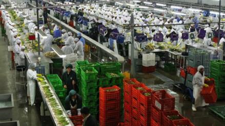 El Estado pierde S/ 93,000 millones por beneficios tributarios a empresas