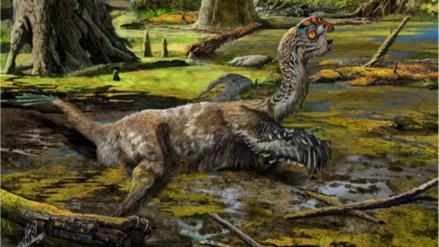 El dinosaurio emplumado que murió cuando intentaba liberarse