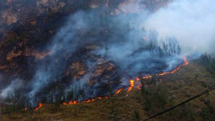Incendios forestales arrasaron con plantaciones en Pasco y Apurímac