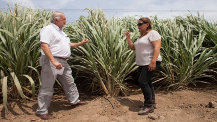 Congresista Takayama pide transparencia en las empresas azucareras