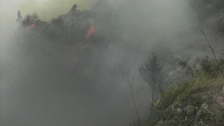 Incendios forestales amenaza a 20 viviendas en Santa Cruz