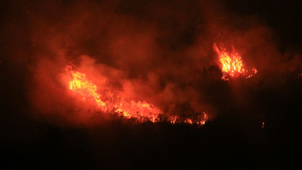 Incendios forestales arrasan tres áreas de conservación en el norte