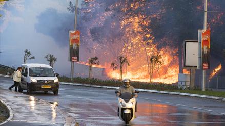80 mil evacuados en Israel por incendio que podría ser atentado terrorista