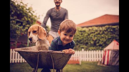 7 consejos de la ciencia para hacer más feliz tu día