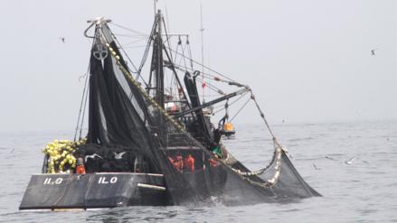 Produce suspendió pesca de anchoveta en 20 zonas del litoral