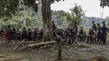 Las FARC