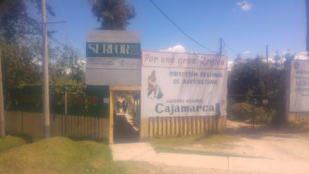 Cajamarca perdió 200 millones de soles en el sector agricultura por sequía
