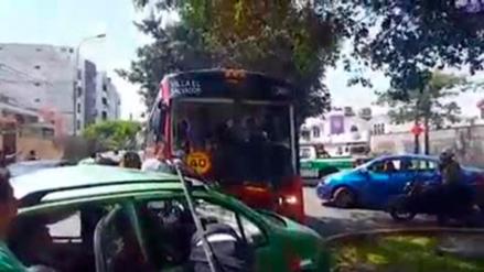 Suspenden a empresa de transporte tras muerte de rector en Surco