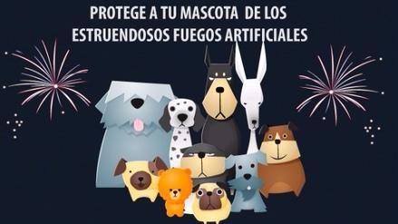 Consejos para proteger a tu mascota de los fuegos artificiales
