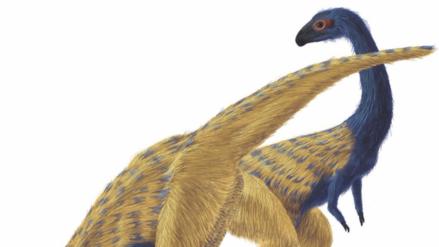 Restos hallados explican cómo los dinosaurios se convirtieron en aves