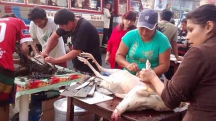 Moyobamba: el precio del pavo entero se elevó hasta los 250 soles