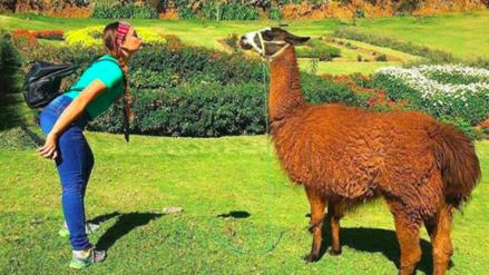 Canatur: 850 mil peruanos saldrán de viaje por Año Nuevo