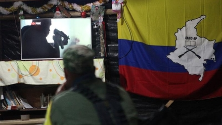 """Gobierno: """"La Ley de Amnistía garantiza el desarme de las FARC"""""""