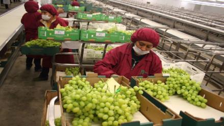 Sunat agiliza revisión de mercancías perecibles para exportación