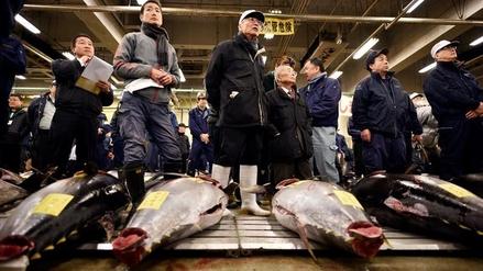 Venden un atún rojo por más de $637,000 en una subasta en Tokio