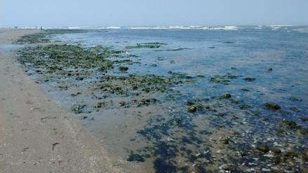 Playas de Lambayeque siguen siendo no saludables