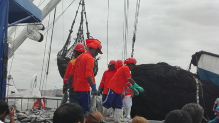 Piura: se reanuda la industria del atún en la provincia de Paita
