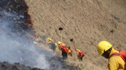 El gran incendio forestal en Valparaíso fue controlado, según autoridades