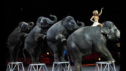 El Circo Ringling cierra sus puertas tras críticas por el uso de animales