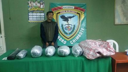 Chimbote: sujeto llevaba 8 kilos de marihuana en ómnibus