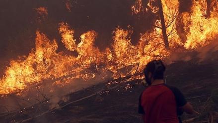 Evacuan a cuatro mil personas por un incendio forestal al sur de Chile