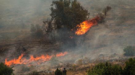 Diez muertos dejan los voraces incendios que consumen bosques en Chile