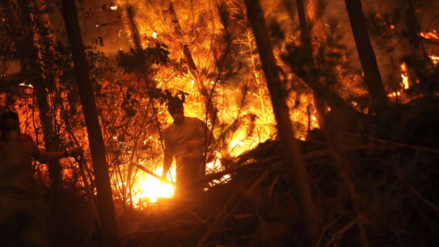 Un bombero y dos policías murieron por los incendios forestales en Chile