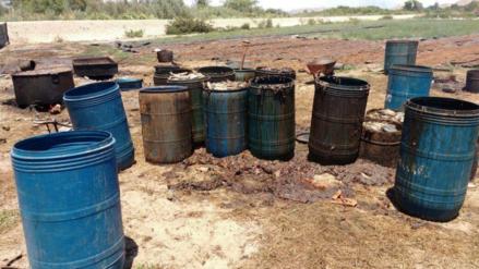 Chiclayo: hallan terreno donde se secaba vísceras de pescado