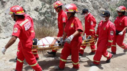 50 bomberos peruanos combatirán los incendios forestales en Chile