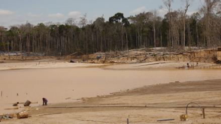 Fotos   La minería sigue amenazando la Reserva Nacional Tambopata