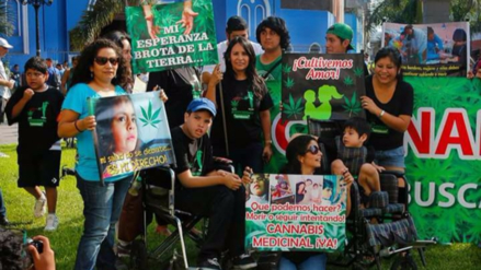 Video | Desmantelaron laboratorio de aceite de marihuana en San Miguel
