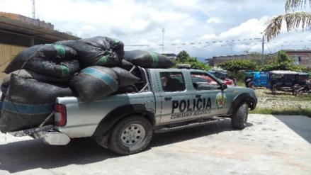 Decomisan 400 kilos de hoja de coca en Aucayacu