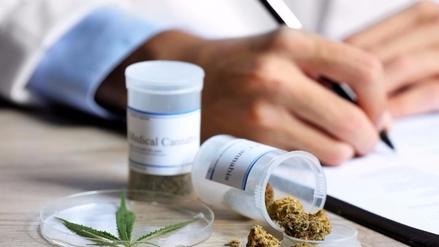 El gobierno propone legalizar el uso medicinal de la marihuana
