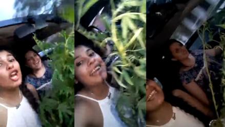 Policías son expulsadas por grabarse con marihuana recién incautada