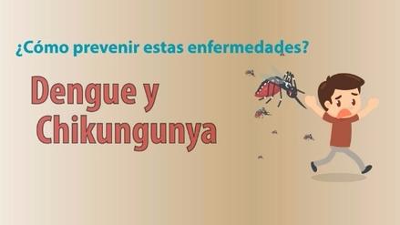 Gráfica | ¿Cómo prevenir el dengue tras las inundaciones y huaicos?