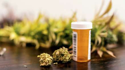 ¡La marihuana medicinal no se fuma!